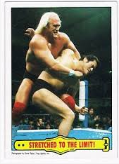 Hogan and Inoki